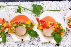 Seared scallops with tropical salsa Stock Photos