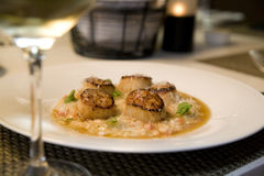 Seared sea Scallops on Risotto Stock Photos