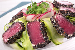Seared tuna closeup Royalty Free Stock Images