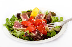 Seared Tuna Green Salad Stock Photography