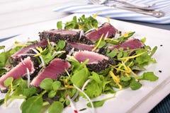 Seared tuna salad Royalty Free Stock Image