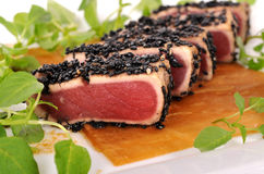 Seared tuna salad closeup Royalty Free Stock Photography