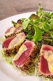 Seared tuna salad Stock Image