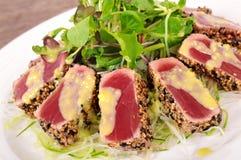 Seared tuna salad Royalty Free Stock Photo