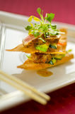Seared Tuna Wonton Appetizer. Seared japanese-style tuna with avocado, sprouts, cucumber and a sweet sauce Stock Photo