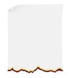 Searing paper vector illustration Royalty Free Stock Image