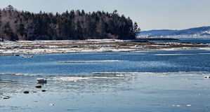 Sears Island in Maine Royalty Free Stock Photos