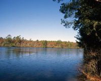 Sears Pond - Suffolk County, New York Royalty Free Stock Image