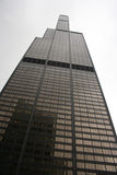 Sears Tower Chicago Fotografie Stock