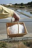 Seasalt apenas cosechado de una cacerola de la sal fotos de archivo