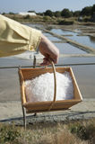 Seasalt just harvested from a salt pan. Freshly harvested salt in a wooden box with a backdrop of French salt pans Stock Photos