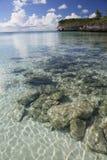 Seascape 2 κήπων Oleander Στοκ φωτογραφίες με δικαίωμα ελεύθερης χρήσης