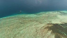 Seascape κοραλλιογενής ύφαλος στη θάλασσα απόθεμα βίντεο