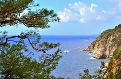 Seascape με μια ακτή των απότομων βράχων Στοκ εικόνες με δικαίωμα ελεύθερης χρήσης