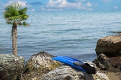 Seascape με τα πόδια για την κολύμβηση Στοκ εικόνα με δικαίωμα ελεύθερης χρήσης
