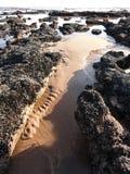 Seascape με τις κορυφογραμμές άμμου και τις λίμνες βράχου στοκ εικόνες