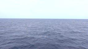 Seascape του ωκεανού ενώ ηλιοβασίλεμα απόθεμα βίντεο