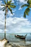 seascape τροπικό στοκ εικόνες