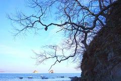 Seascape зимы Стоковые Изображения RF