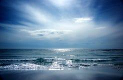 seascape морсого льва Стоковое Изображение RF