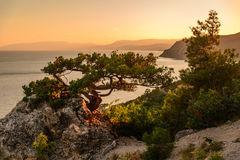 Seascape на заходе солнца Стоковые Фото