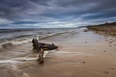 Seascape, побережье белого моря стоковое фото