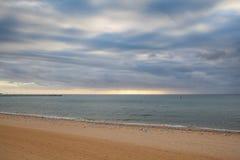 Seascape с много чайок на песчаном пляже Стоковые Изображения