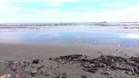 Seascape с надвигающийся волнами и облачным небом сток-видео
