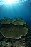 seascape στοκ φωτογραφία με δικαίωμα ελεύθερης χρήσης