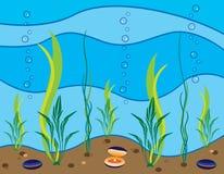 Seascape Stock Photos