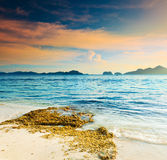 seascape Obraz Royalty Free