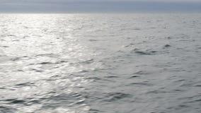 Seascape stock video