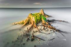 Seascape стоковые изображения rf