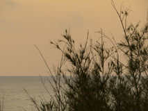 Seascape Foto de Stock Royalty Free