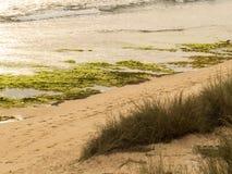 Seascape Imagem de Stock Royalty Free