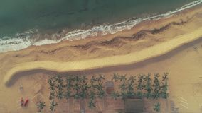 Seascape aerial drone view. Sea waves, sand, beach and palm trees. stock video