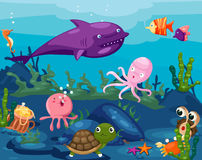 Seascape animals life underwater Royalty Free Stock Images