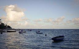 Seascape av Mauritius Island Royaltyfri Bild
