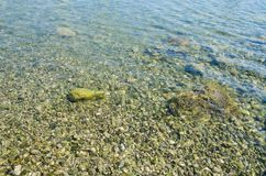 Sea background, ripple surface of transparent water. Seascape background, ripple surface of transparent water, view of colorful stones bottom underwater stock image