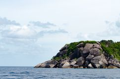 Seascape bonito com foco na floresta na rocha da montanha Fotografia de Stock Royalty Free