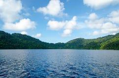 Seascape bonito com foco na floresta na rocha da montanha Imagem de Stock Royalty Free