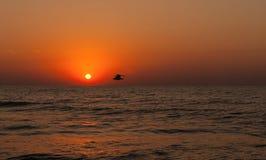 Seascape bonito com nascer do sol morno alaranjado Foto de Stock Royalty Free