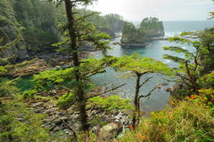 Seascape in cape flattery Royalty Free Stock Photo