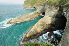 Seascape in cape flattery stock photos