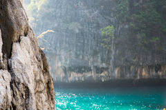 Seascape: cliffs and turquoise water Stock Image