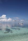 Seascape com barco e peixes imagem de stock