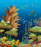 Seascape with coral reef. Nature  seascape with underwater creatures and coral reef Royalty Free Stock Image