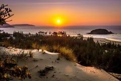 Seascape da natureza com vista de Sun de incandescência e de arbustos selvagens na areia no nascer do sol alaranjado lindo fotos de stock royalty free