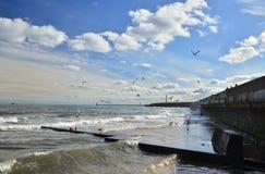 Seascape de Sunderland Fotografia de Stock