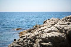 seascape denny brzeg dryluje zmierzch Fotografia Royalty Free